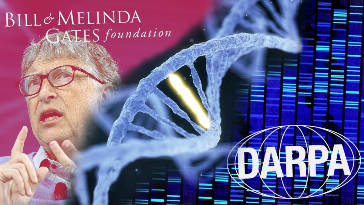 guess-who's-funding-and-promoting-gene-drives…