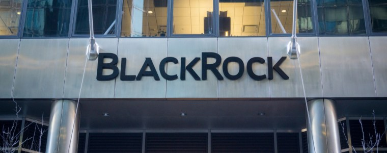 meet-blackrock,-the-new-great-vampire-squid