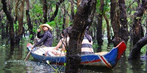 mangrovenwalder-–-ein-ubersehener-baustein-im-klimapuzzle