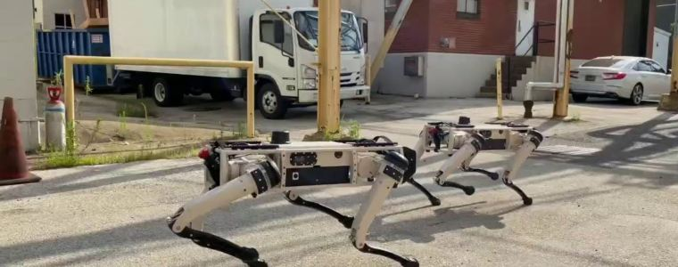 military-wants-robot-dogs-for-base-security-and-to-test-live-dog-fight-of-human-versus-ai-–-activist-post