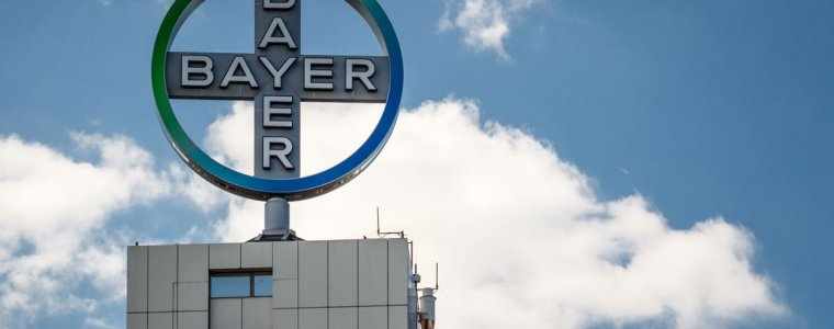 "bayer-lobbying-""very-strongly""-to-change-eu's-gmo-regulations-to-exempt-gene-editing-–-global-research"