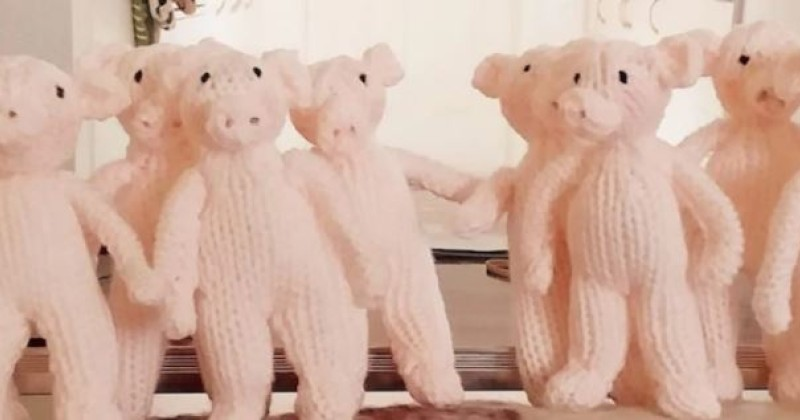 """facebook-algorithm-accuses-81-year-old-grandmother-of-""""hate-speech""""-over-knitted-pigs-comment"""