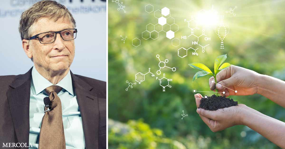 could-gates'-farmland-impact-the-environment-and-food-supply?
