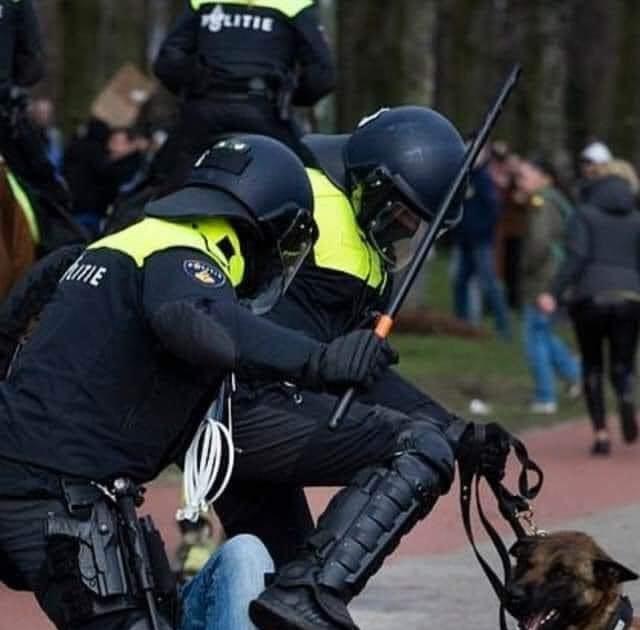 oud-me-er-walgt-van-politie-geweld