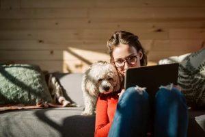 antenne-installaties-maken-er-een-hondenleven-van-…