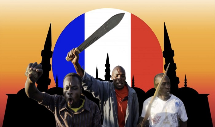 20-franse-generaals-ondertekenen-brief-waarin-ze-onderdrukking-van-gele-hesjes-veroordelen;-waarschuwen-voor-komende-rassenoorlog-–-dissidentnl