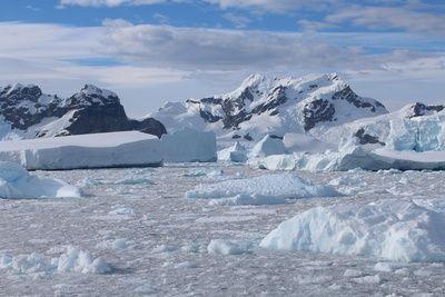 neue-studie:-meereis-um-die-antarktis-wachst