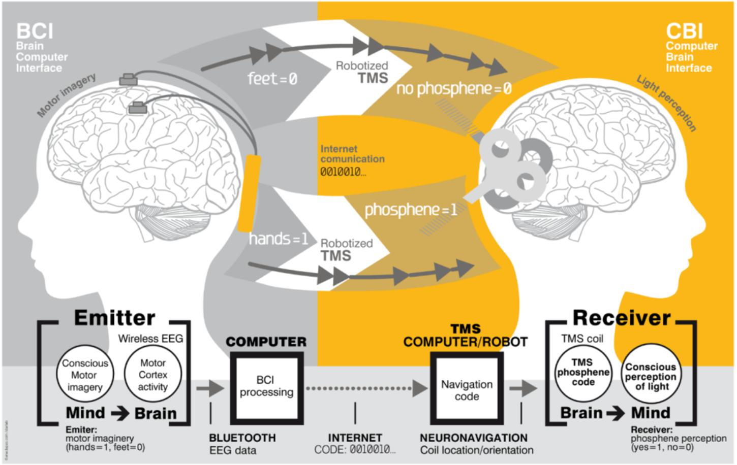 hacking-the-brain-with-nanoparticles-–-forbidden-knowledge-tv