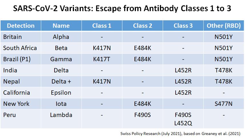 coronavirus-variants:-what's-next?