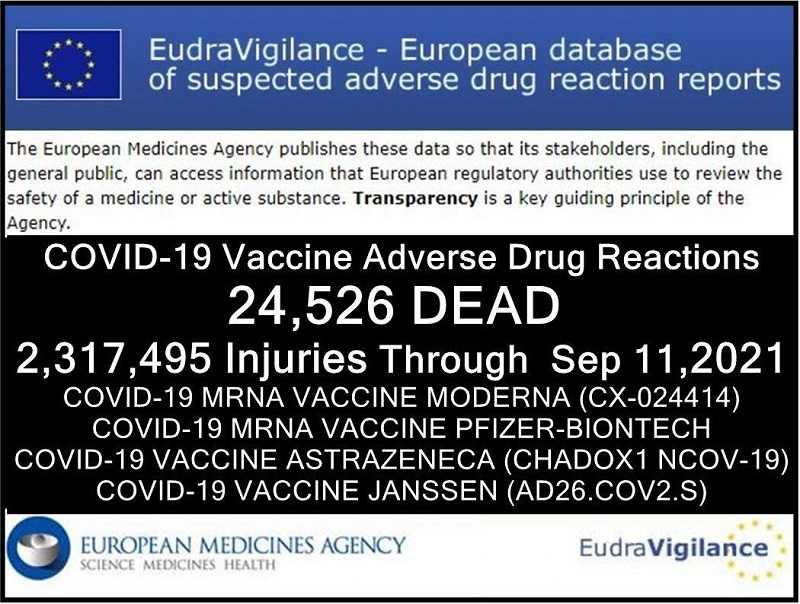24526-doden-2317.495-gewonden-na-covid-19-injecties-gemeld-in-databank-van-ongewenste-bijwerkingen-van-geneesmiddelen-van-de-europese-unie