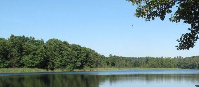 de-tuin-en-een-wandeling-aan-het-meer-waren-belangrijker:-merkel-weigerde-biden's-oproep