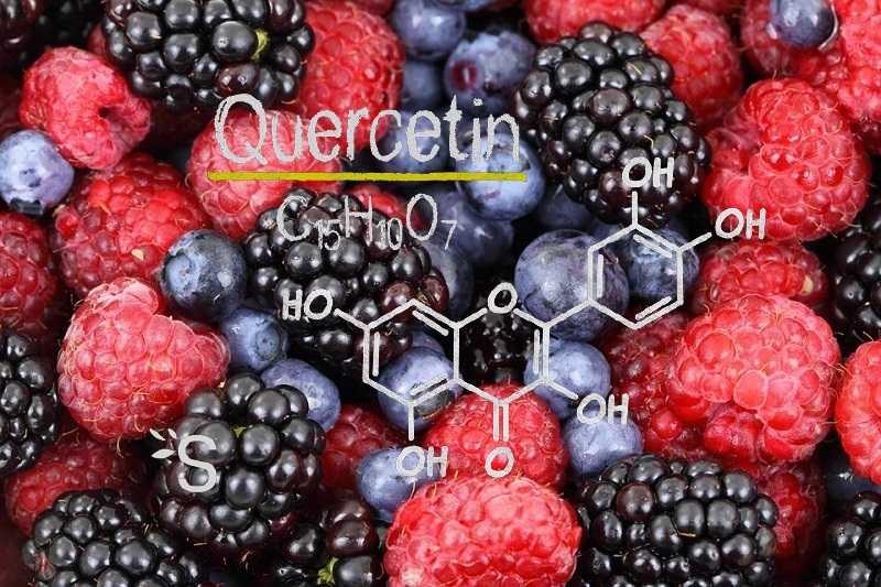 beter-dan-hydroxychloroquine?-twee-nieuwe-studies-tonen-aan-dat-quercetine-de-resultaten-van-covid-verbetert-–-gemakkelijker-te-verkrijgen