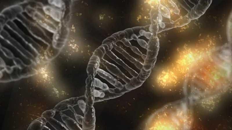 verontrustend:-drie-bestaande-covid-vaccins-bevatten-dna-(niet-alleen-rna)-voor-de-synthese-van-eiwitten-in-uw-lichaam.