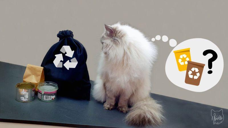 Jak prawidłowo segregować kocie odpadki