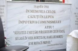 sfintire troita Motca_2012_05