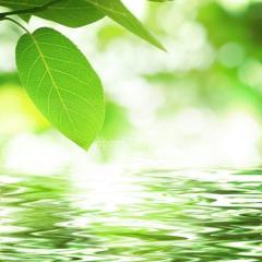瞑想の効果がすごい!脳に働きかけ生き方も変えられる!私の体験から