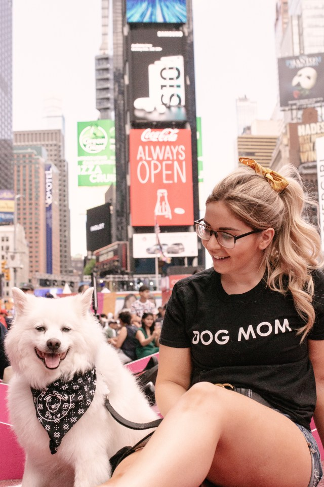 Girl and American Eskimo dog in Times Square New York City