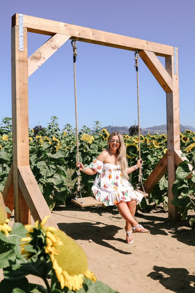 Swing at Maan Farms in sunflower field