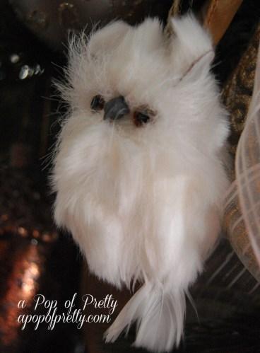 White owl decor