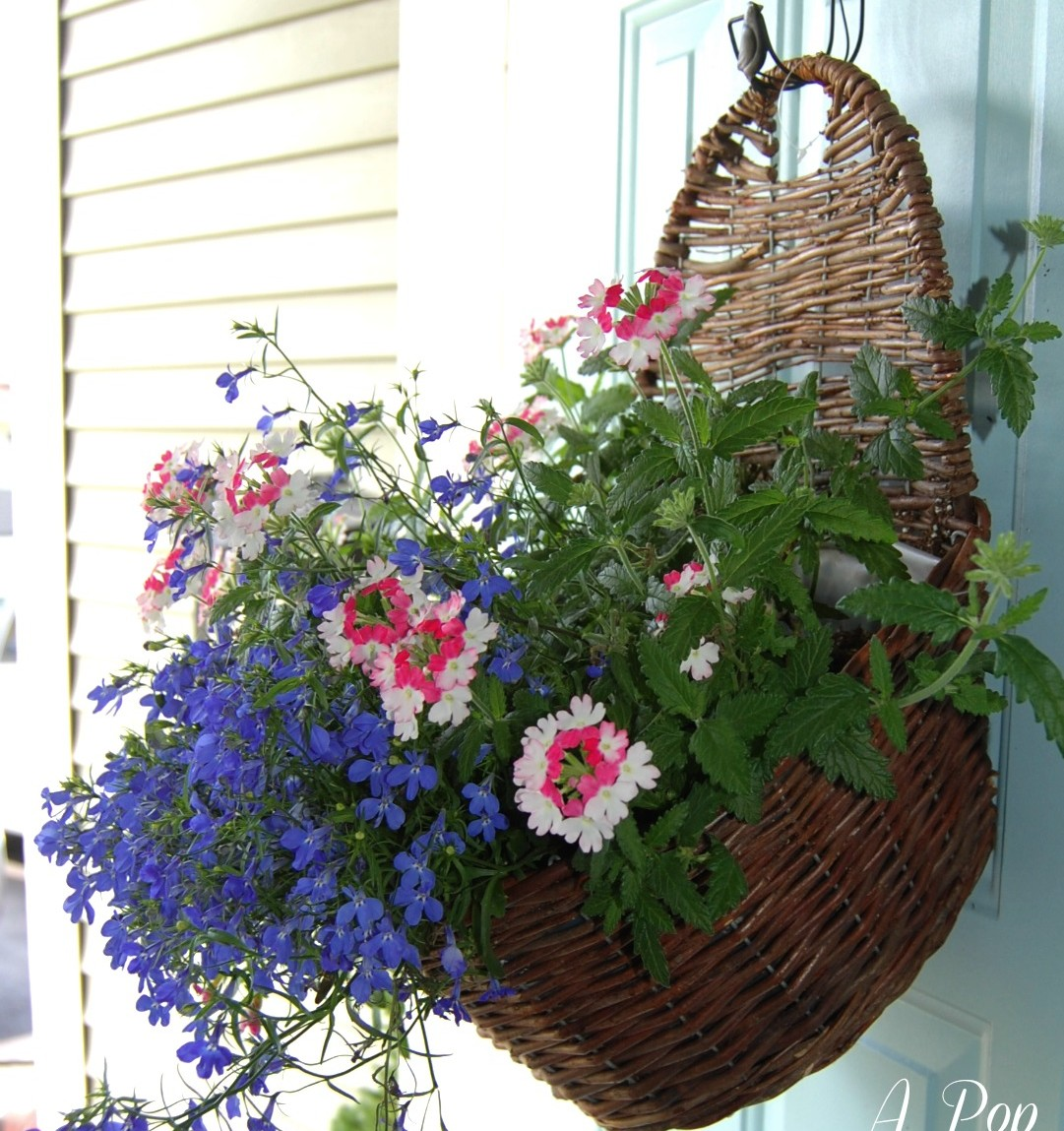 Front Door Baskets: Container Gardening In A Hanging Basket