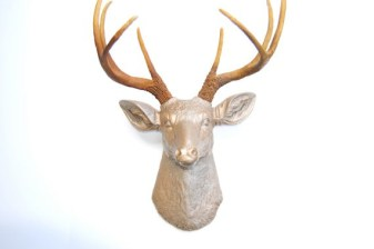 Near and deer3