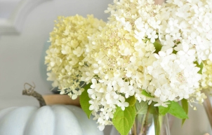Early Fall Decorating with Hydrangeas
