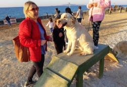 Το πρώτο πάρκο για σκύλους είναι πραγματικότητα και λειτουργεί στο Ηράκλειο!