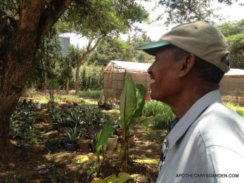 Professor Ermias Dagne at his farm just outside Addis Ababa.