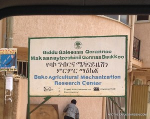 The Baku agricultural mechanization center where new and human designs for Civet traps and cages have been field tested with Civet farmers over the years.