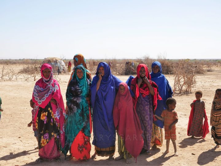 Visiting the collectors of Frankincense and Myrrh in the Somali Region of Ethiopia February 2019