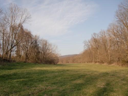 Early Spring in Virginia.