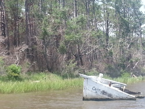 Fowl river wreck.