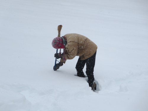 Measuring the snow.  16 inches and counting.