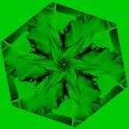 apothemary logo