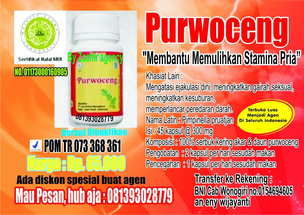 purwoceng obat herbal berijin pom