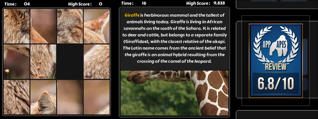 Tap Puzzle Animals