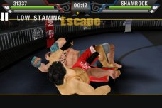 MMA-by-EA-SPORTS-06