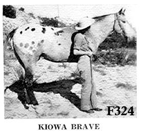 kiowabravef324