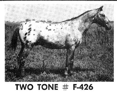 twotonef426