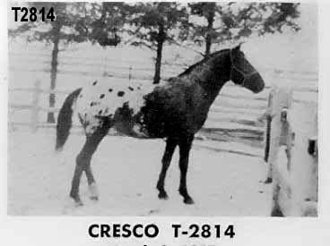 crescot2814