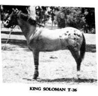 kingsolomont26
