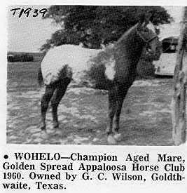 wohelot1939c