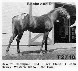 blackclouddt2710