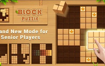 Wood Block Puzzel