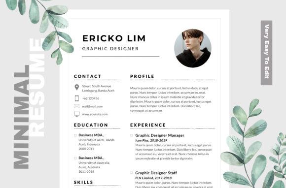 250+High-Quality Editable CV -Resume Design Template Cheap Price 2021