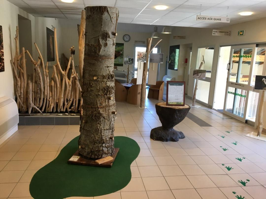 hector arbre mort ramieres