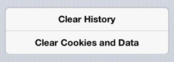 fix other space iPhone delete browser history cache
