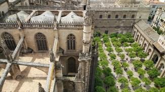 Vanuit de Giraldatoren in de kathedraal heb je een prachtig uitzicht op de kathedraal en de tuin met de sinaasappelbomen.