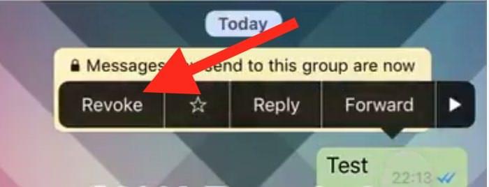 Opción para borrar un Whatsapp
