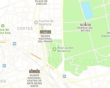 ¿Cuál es el mejor navegador GPS para iPhone?